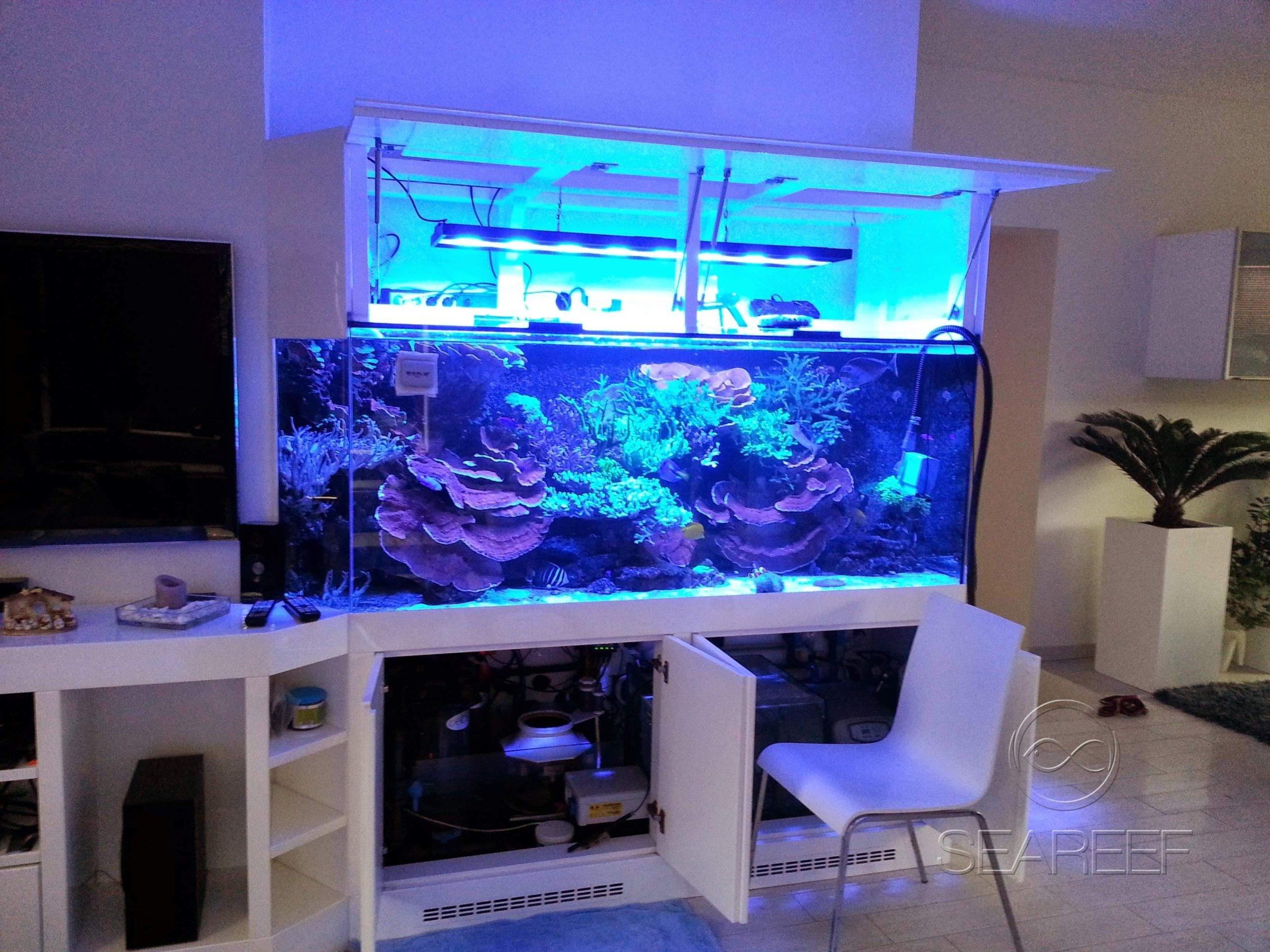 Mořské 1200 litrové akvárium jako elegantní doplněk obývacího pokoje.