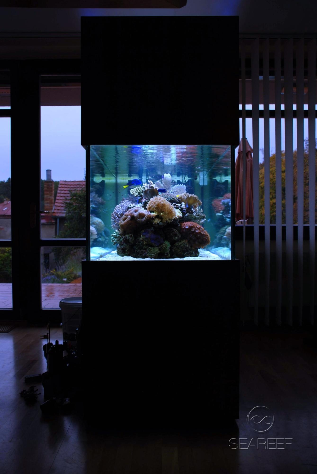 Mořské akvárium na míru o objemu 700 litrů.