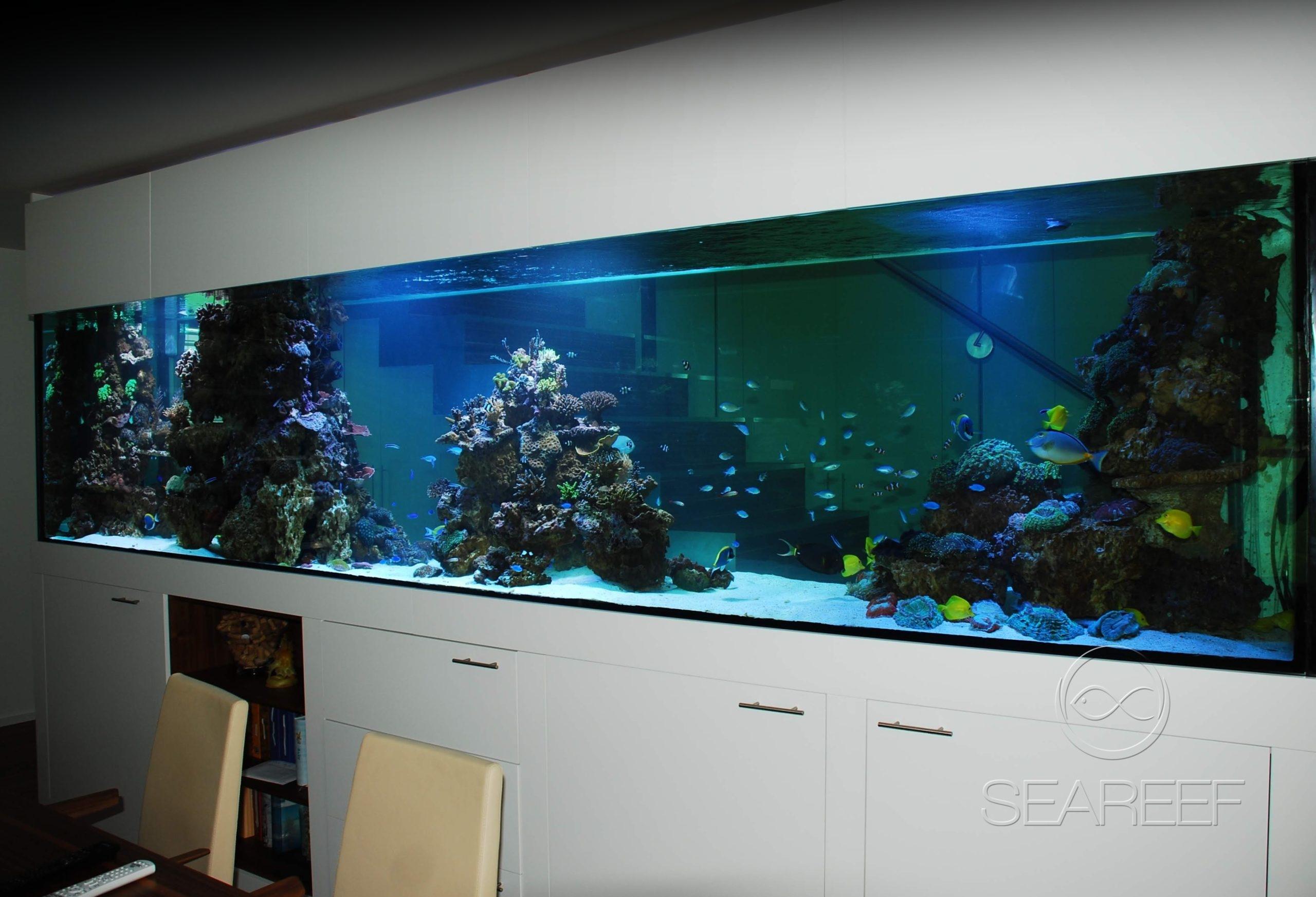 Mořské akvárium na míru doplňující design interiéru.