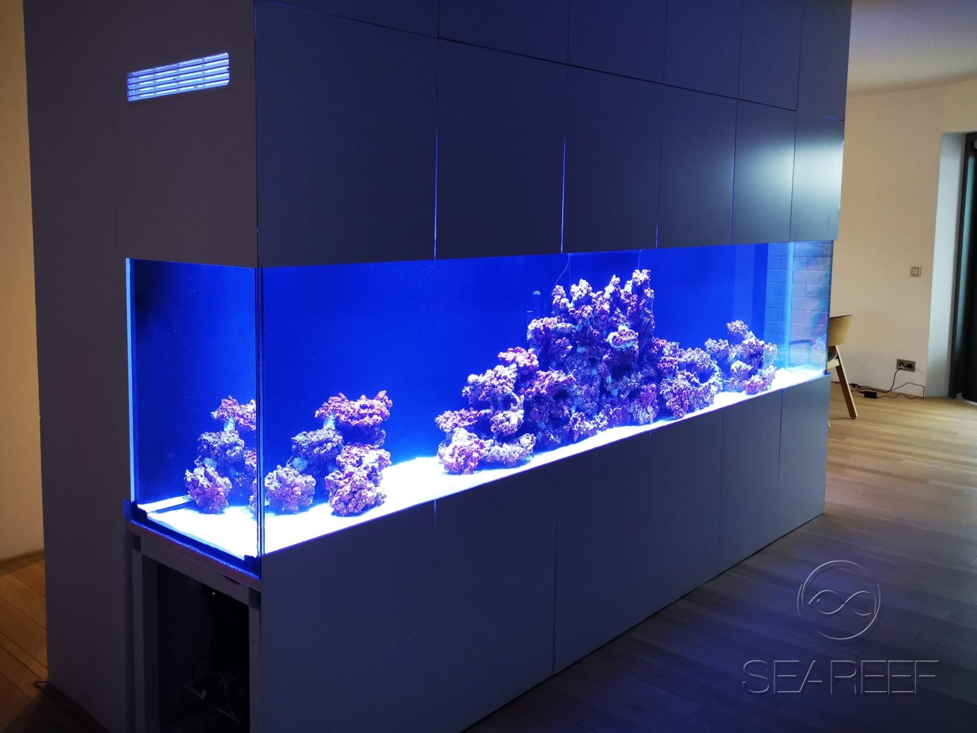 Designové mořské akvárium o objemu 1700 litrů jako dominanta obývacího pokoje.