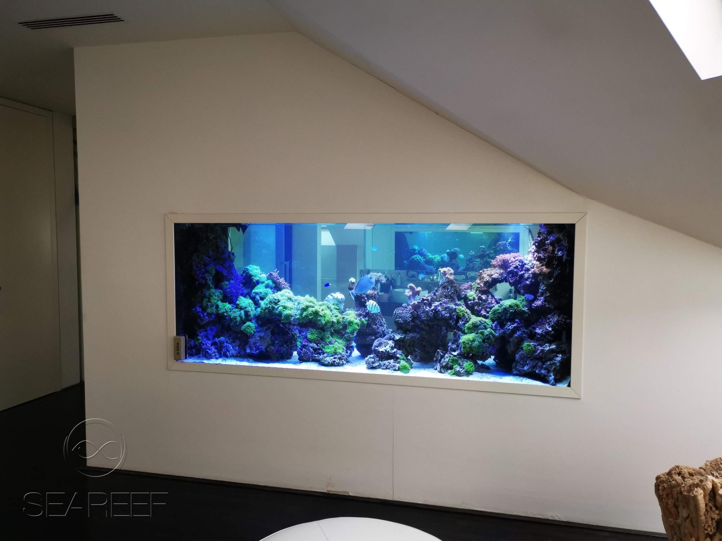Mořské designové akvárium na míru interiéru o objemu 2280 litrů.
